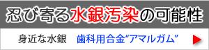 【忍び寄る水銀汚染】